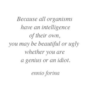 Beautiful organisms