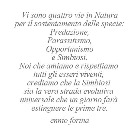 Le 4 Vi della Natura.jpg