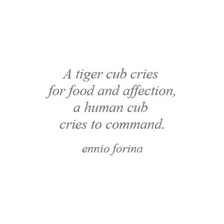 Tiger and Human