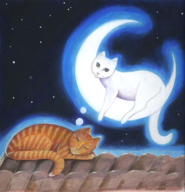 Cat on the moonn.jpg